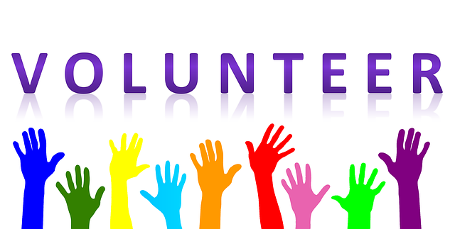 volunteer needed, volunteers needed, home with friends, social worker